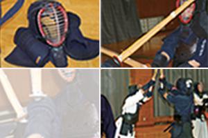 kendo2015.jpg