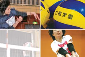 volley2015.jpg